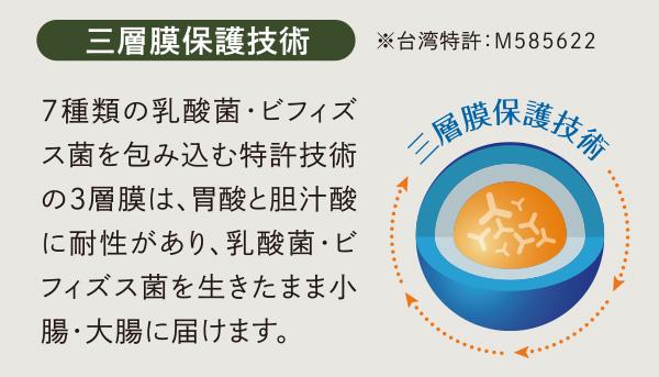 三層膜保護技術